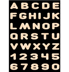 alphabet wooden letters vector image vector image