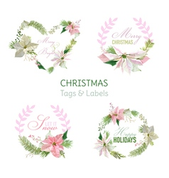 Flower Banners and Tags for Christmas vector image vector image