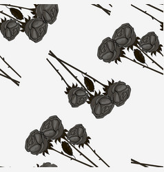 black roses seamless on a vintage vector image
