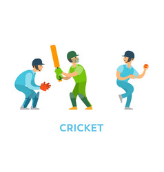 cricket players team characters with bats balls vector image