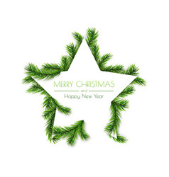 Ddecorative star frame design with pine branches vector