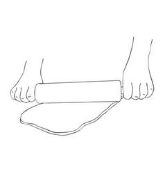 hands rolling dough vector image