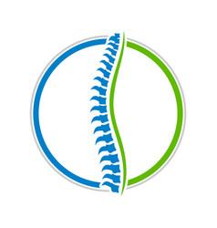 healthy spine circle design vector image