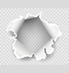 Transparent paper rip hole vector
