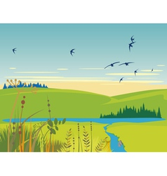 rural lake summer landscape vector image