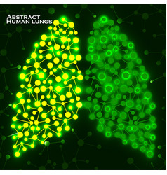 Abstract human lungs molecule structure vector