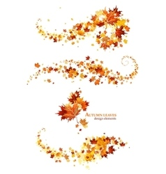 Autumn leaves design elements vector image