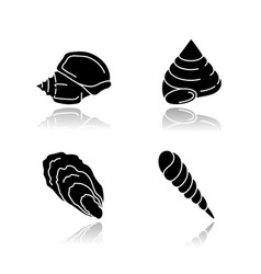 Different seashells drop shadow black glyph icons vector