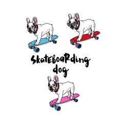 French bulldog on skateboard vector
