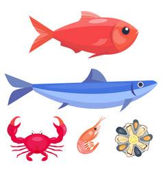 Fresh seafood flat fish vector