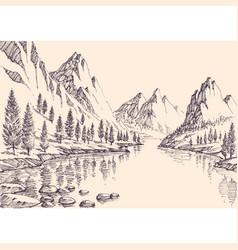 hand drawn mountain pine forest vector image