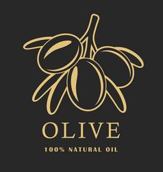 olive with leaves on dark background olive logo vector image