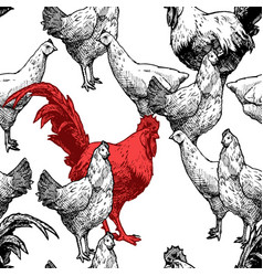 pattern with hens and red cock vector image