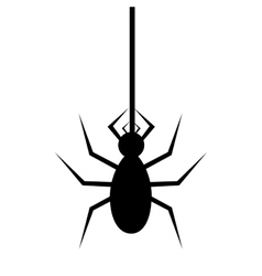 Spyder in cobweb silhouette vector