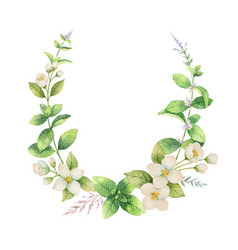 Watercolor frame jasmine and mint vector