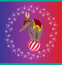 Circus elephant balancing on ball vector