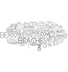 Beaches of bermuda text word cloud concept vector