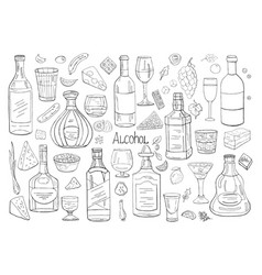 hand drawn big set of alcohol elements isolated vector image