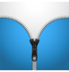 Metalic Zip On Blue Knitted Cloth vector image
