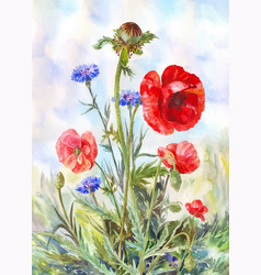 Watercolor painting with red poppies and blue vector