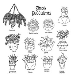 cartoon doodle collection vector image vector image