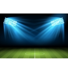 Football arena vector image