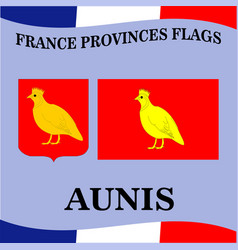 Flag of french province aunis vector