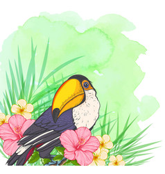 Green summer background with toucan vector