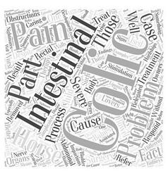 Intestinal colic Word Cloud Concept vector