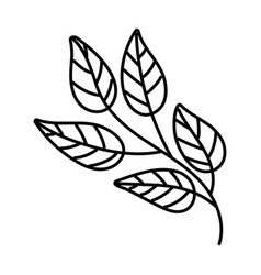 Leaf plant nature line style icon vector