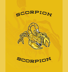 scorpion yellow vector image
