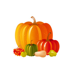 autumn fall pumpkin icon for harvest festival or vector image