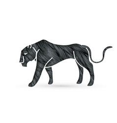 black panther tiger graphic vector image