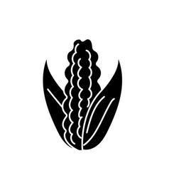 contour delicious and healthy cob corn food vector image