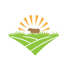 cow logo design template vector image