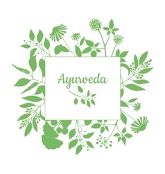 Green square frame with collection ayurveda vector