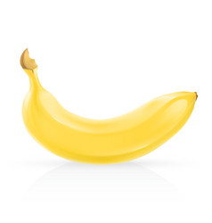 Realistic banana vector