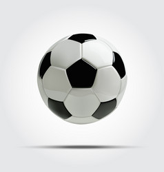 realistic soccer ball or football ball vector image vector image