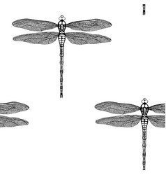 Seamless pattern from black dragonfly vector