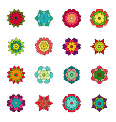 set bright flowers vector image