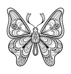 Zentangle black Butterfly for adult anti vector image