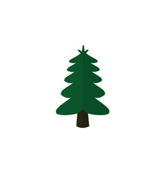 isolated spruce flat icon park element can vector image vector image