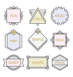 cute geometrical line vintage emblems and labels vector image vector image