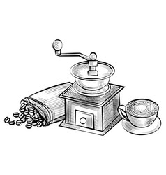aromatic coffee beans in sack and grinder cup vector image