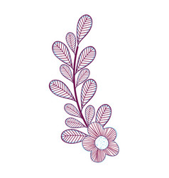 Branch flower decoration design vector