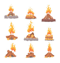 cartoon types of tourist tcampfires set of vector image