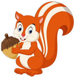 cute squirrel cartoon vector image vector image
