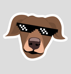 dog wearing pixel glasses brown dog with ears down vector image