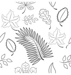 Seamless of different leaves contour plot vector image