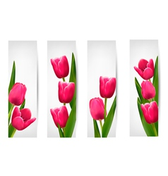 Set of banners with pink flower vector image